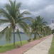 Plataformes d'Activitats. Amador, Panamà.