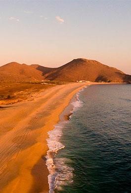 Estudi de Mercat. Cabo Santos.