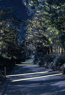 Il·luminació Jardins